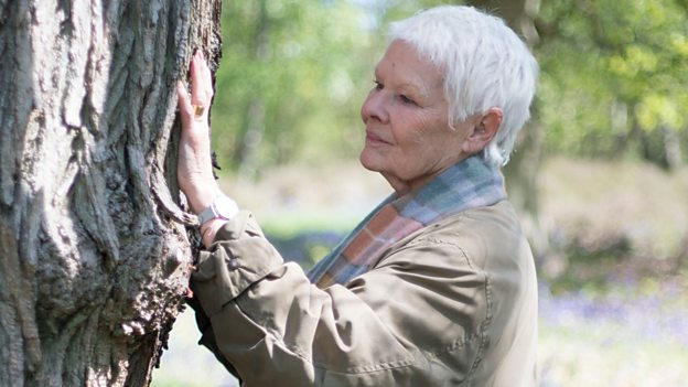 Judi Dench - My Passion For Trees