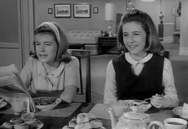 The Patty Duke Show The Cousins
