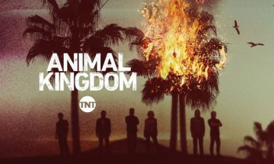 Animal Kingdom: Libertad (TNT Jul 24, 2018)