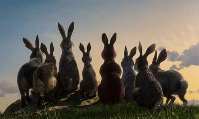 Watership Down Netflix Premiere Sun 23 Dec 2018