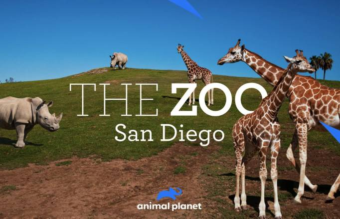 The Zoo San Diego-California Tales Animal Planet